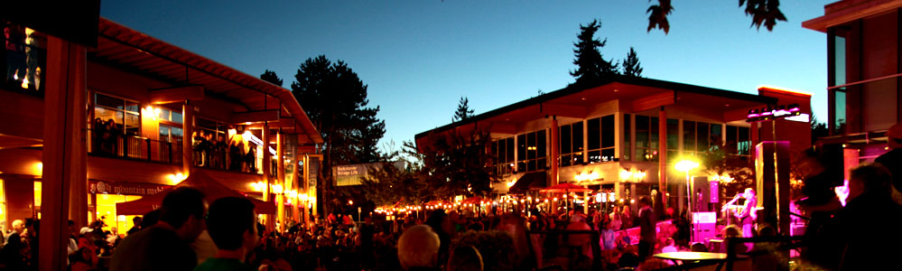 lynnvalleyvillage concert